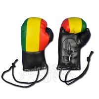 Mini Boxing Gloves - Rasta Black & Tri Color
