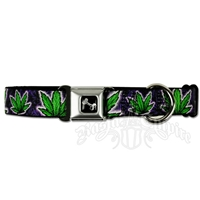 Marijuana Purple Haze Dog Collar with Bone Buckle