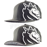 Lion of Judah Charcoal & White Flip Cap