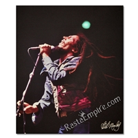 Bob Marley Concert Canvas Painting 27