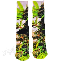 Marijuana Plant Socks