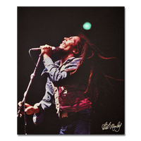 Bob Marley Concert Canvas Painting 19